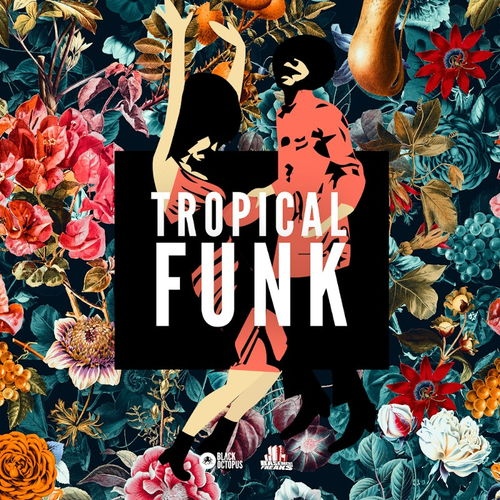 Black Octopus Sound - Tropical Funk by Basement Freaks (WAV) - сэмплы funk